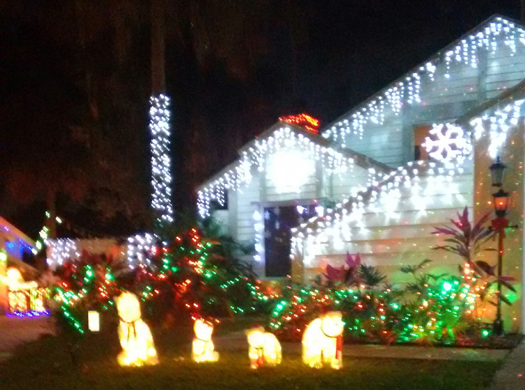 house decorated for holidays